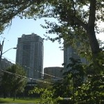 willowdale12